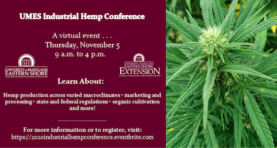 Have questions about hemp in Maryland?  Join us on November 5th for the second annual UMES Industrial Hemp Conference!